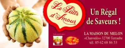 Le Puits d'amour, melon d'excellence à Lectoure